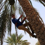 Charlie Creech photo of guy climbing a tree